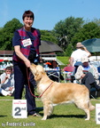 Cherry winning 2nd at European Dog Show in Dublin, June 2009