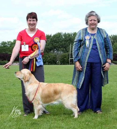 Cherry - Midland Pup of the Year winner with judge
